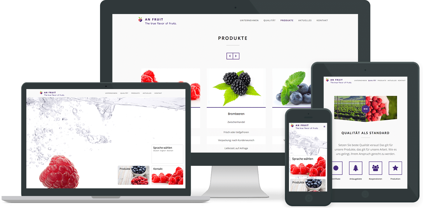 Webdesign Referenz: AN Fruit